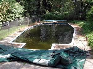 Pool Opening Service Madison Wisconsin